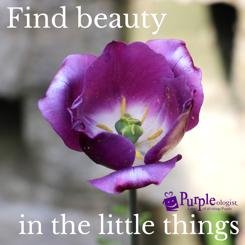 Purple Quotes Simple 48 Purple Quotes To Share With Those Who Love Purple Purpleologist